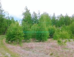 Morizon WP ogłoszenia | Działka na sprzedaż, Stare Budy Radziejowskie, 5200 m² | 3433