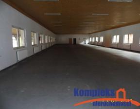 Lokal użytkowy do wynajęcia, Wąwelnica Lubieszyn, 650 m²