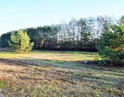 Morizon WP ogłoszenia | Działka na sprzedaż, Leszno, 1500 m² | 6574