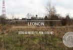 Morizon WP ogłoszenia | Działka na sprzedaż, Leoncin, 6100 m² | 0602