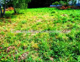Morizon WP ogłoszenia | Działka na sprzedaż, Odrano-Wola, 1745 m² | 3676