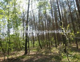 Morizon WP ogłoszenia | Działka na sprzedaż, Siestrzeń, 1601 m² | 8170