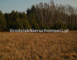 Morizon WP ogłoszenia   Działka na sprzedaż, Kuklówka Radziejowicka, 10000 m²   3875