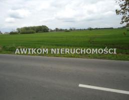 Morizon WP ogłoszenia | Działka na sprzedaż, Kampinos, 3330 m² | 8347