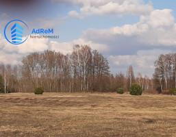Morizon WP ogłoszenia   Działka na sprzedaż, Krzaki Czaplinkowskie, 24800 m²   2996