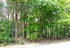 Morizon WP ogłoszenia | Działka na sprzedaż, Hornówek, 2000 m² | 4998