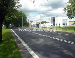 Morizon WP ogłoszenia | Działka na sprzedaż, Aleksandrowo, 9966 m² | 4391