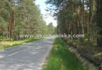 Morizon WP ogłoszenia | Działka na sprzedaż, Kolonia Gościeńczyce, 3000 m² | 8798