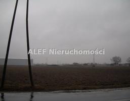 Morizon WP ogłoszenia | Działka na sprzedaż, Kolonia Lesznowola, 14000 m² | 9261