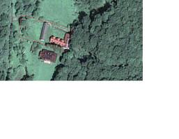 Morizon WP ogłoszenia   Dom na sprzedaż, Będkowice, 354 m²   4965