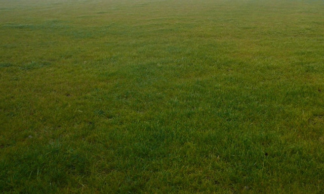 Działka na sprzedaż <span>Pruszkowski, Raszyn, Janki/ K Warszawy, al. Krakowska</span>