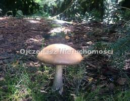 Morizon WP ogłoszenia | Działka na sprzedaż, Bydgoszcz Piaski, 4500 m² | 3069