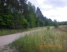 Morizon WP ogłoszenia | Działka na sprzedaż, Czapielsk, 1180 m² | 2017