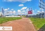 Lokal usługowy do wynajęcia, Kalisz, 300 m² | Morizon.pl | 8281 nr14