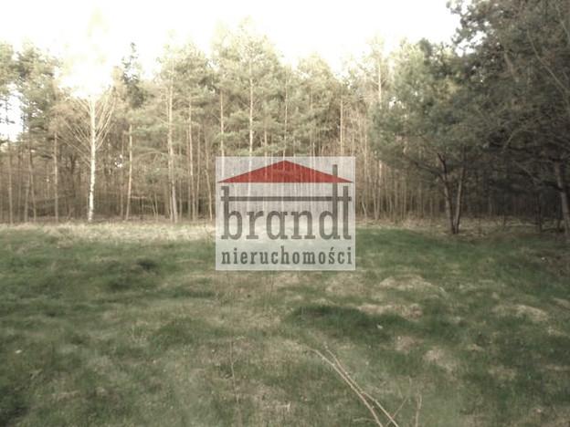 Morizon WP ogłoszenia   Działka na sprzedaż, Kampinos, 7500 m²   7554