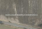 Morizon WP ogłoszenia | Działka na sprzedaż, Gliwice Czechowice, 14897 m² | 4832