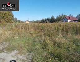 Morizon WP ogłoszenia | Działka na sprzedaż, Aleksandrówka, 3045 m² | 0282