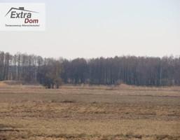 Morizon WP ogłoszenia   Działka na sprzedaż, Pobierowo, 39000 m²   6064