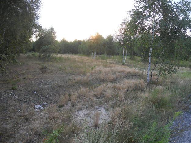 Morizon WP ogłoszenia   Działka na sprzedaż, Jaktorów, 20100 m²   6013