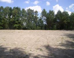 Morizon WP ogłoszenia | Działka na sprzedaż, Borkowo Pod Elżbietowo, 2934 m² | 6447
