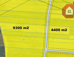 Morizon WP ogłoszenia | Działka na sprzedaż, Myszczyn Graniczna, 4400 m² | 8151