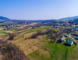 Morizon WP ogłoszenia | Działka na sprzedaż, Mszalnica, 11520 m² | 3451