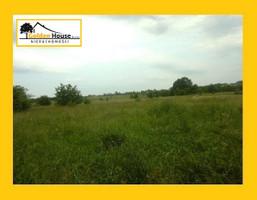 Morizon WP ogłoszenia | Działka na sprzedaż, Preczów Wiejska, 3000 m² | 2107