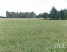 Morizon WP ogłoszenia   Działka na sprzedaż, Bartniki, 1200 m²   6364