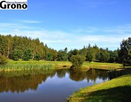 Morizon WP ogłoszenia | Działka na sprzedaż, Łebno Szkolna, 79600 m² | 4243
