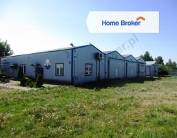 Morizon WP ogłoszenia | Hala na sprzedaż, Wiśniew, 1000 m² | 4894