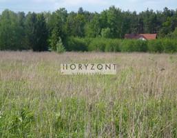 Morizon WP ogłoszenia | Działka na sprzedaż, Lesznowola, 23939 m² | 8798