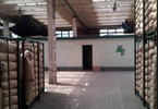 Morizon WP ogłoszenia   Hala na sprzedaż, Jarocin, 6229 m²   7928