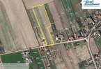 Morizon WP ogłoszenia | Działka na sprzedaż, Skwierzynka, 11600 m² | 8237