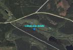 Morizon WP ogłoszenia   Działka na sprzedaż, Dęborogi Dęborogi, 41700 m²   8399