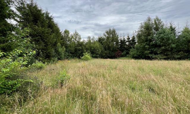 Działka na sprzedaż <span>Kołobrzeski, Kołobrzeg, Obroty, Obroty</span>