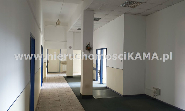 Komercyjne do wynajęcia <span>Bielsko-Biała M., Bielsko-Biała, Centrum</span>