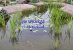 Morizon WP ogłoszenia   Działka na sprzedaż, Józefów, 1000 m²   4420