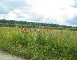 Morizon WP ogłoszenia | Działka na sprzedaż, Janczewice, 10600 m² | 9975