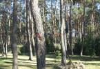 Morizon WP ogłoszenia | Dom na sprzedaż, Czarnów, 145 m² | 0916