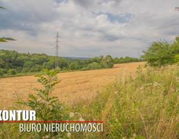 Morizon WP ogłoszenia   Działka na sprzedaż, Cieszyn, 9104 m²   1676