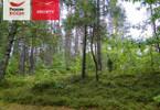 Morizon WP ogłoszenia | Działka na sprzedaż, Skorzewo, 3008 m² | 6805