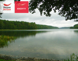 Morizon WP ogłoszenia   Działka na sprzedaż, Skorzewo, 3000 m²   6804