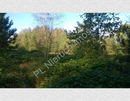 Morizon WP ogłoszenia   Działka na sprzedaż, Budy-Grzybek, 15851 m²   0219