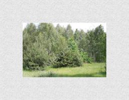 Morizon WP ogłoszenia | Działka na sprzedaż, Skuły, 16443 m² | 2263