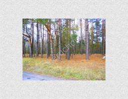 Morizon WP ogłoszenia | Działka na sprzedaż, Wólka Wybraniecka, 12500 m² | 4624
