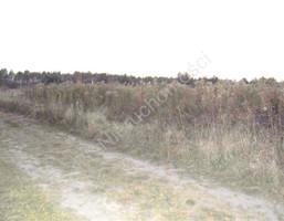 Morizon WP ogłoszenia | Działka na sprzedaż, Piaseczno, 5000 m² | 3357