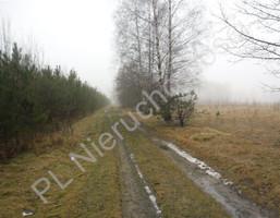 Morizon WP ogłoszenia | Działka na sprzedaż, Łaziska, 18300 m² | 2946