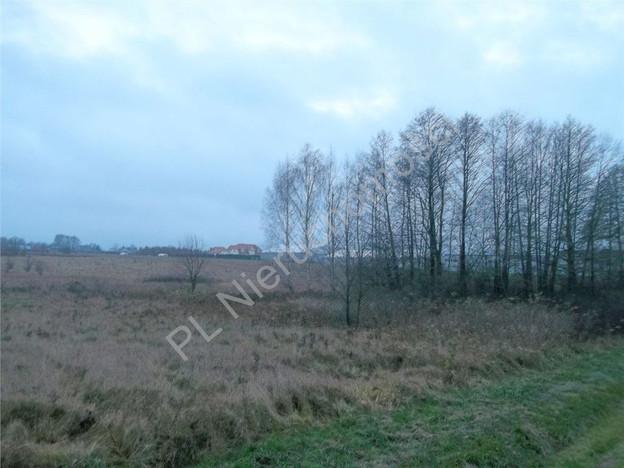 Morizon WP ogłoszenia   Działka na sprzedaż, Dziękowizna, 2000 m²   3521