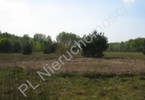 Morizon WP ogłoszenia | Działka na sprzedaż, Nadarzyn, 18000 m² | 1107