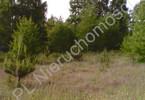 Morizon WP ogłoszenia   Działka na sprzedaż, Długokąty Długokąty Małe, 12334 m²   7588